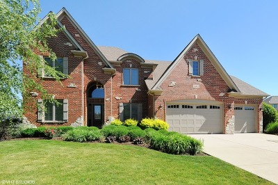 Plainfield Single Family Home Contingent: 13013 Timber Wood Circle