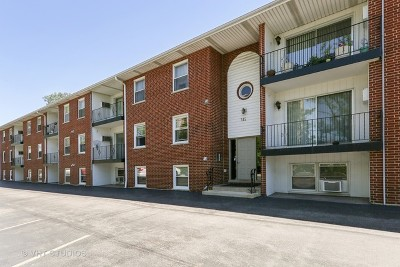 Westmont Condo/Townhouse For Sale: 515 North Cass Avenue #2B