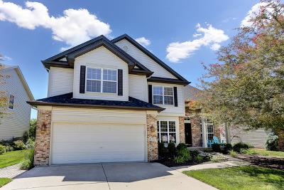 South Elgin Single Family Home Contingent: 670 Lake Ridge Drive