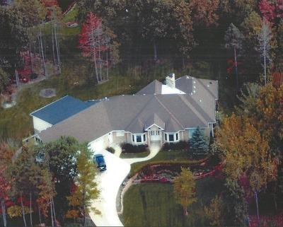 Homer Glen Single Family Home For Sale: 16349 South Alberta Court