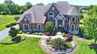 St. Charles Single Family Home For Sale: 40w695 Corron Court