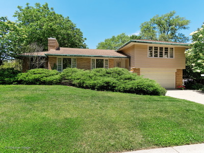Western Springs Single Family Home For Sale: 4124 Howard Avenue