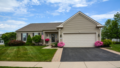Huntley Single Family Home For Sale: 12082 Hideaway Drive