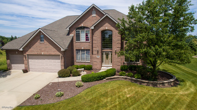 Mokena Single Family Home Contingent: 12838 West Timber Lane