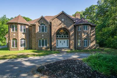 Steger Single Family Home For Sale: 22775 Sherman Road
