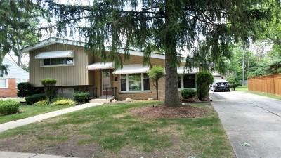 Elmhurst Single Family Home Price Change: 3n328 Wilson Street