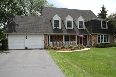 Barrington Single Family Home For Sale: 1213 Lake Shore Drive
