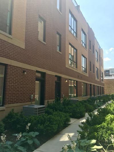 Oak Park Condo/Townhouse Contingent: 111 Home Avenue #2