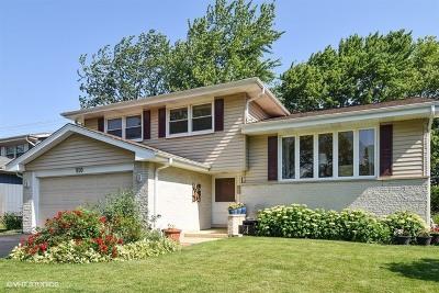 Mount Prospect Single Family Home For Sale: 910 Whitegate Drive