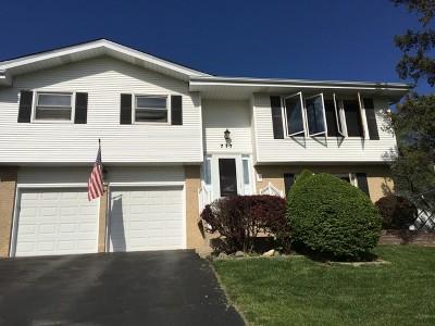 Roselle Single Family Home For Sale: 717 Kipling Court