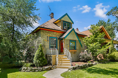 River Forest Single Family Home Price Change: 42 Franklin Avenue