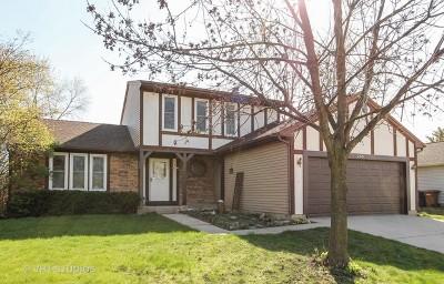 Roselle Single Family Home For Sale: 255 South Garden Avenue