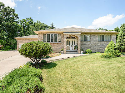 Bensenville Single Family Home For Sale: 4n250 Central Avenue