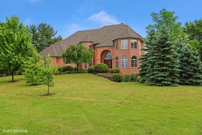 Barrington Single Family Home For Sale: 21413 North Elizabeth Road