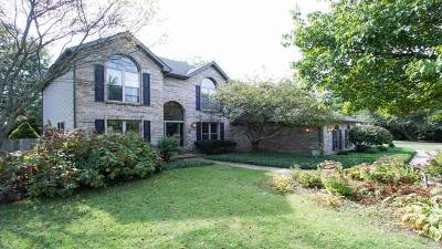 Elburn Single Family Home For Sale: 39w625 Fabyan Parkway