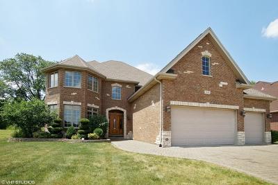 Addison Single Family Home For Sale: 636 North 4th Avenue