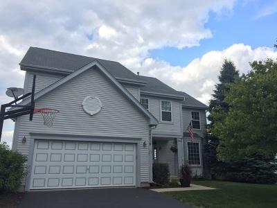 Plainfield Single Family Home Re-activated: 24016 West Marathon Lane