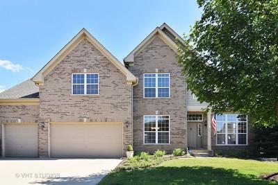 Hoffman Estates Single Family Home For Sale: 5425 Nicholson Drive