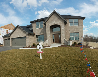 Lockport Single Family Home For Sale: 16457 West Tunrberry Circle