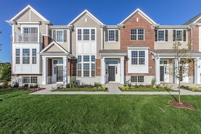 Naperville Condo/Townhouse For Sale: 2971 Madison Lot#2902 Drive
