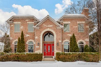 Wheaton Single Family Home For Sale: 309 West Union Avenue