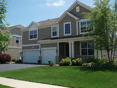 Huntley Single Family Home For Sale: 10691 Savannah Lane