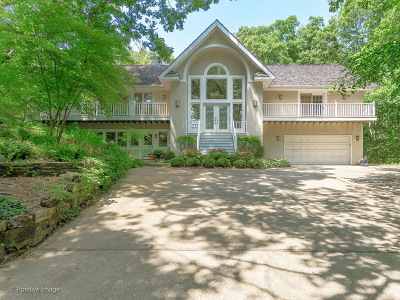 Burr Ridge Single Family Home For Sale: 113 Oak Ridge Drive East