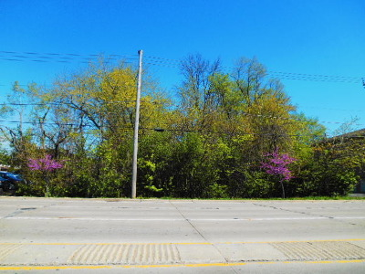Palos Hills Residential Lots & Land For Sale: 7936 West 103rd Street