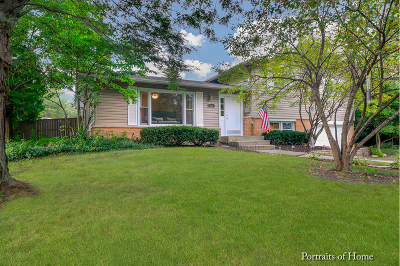 Downers Grove Single Family Home For Sale: 620 67th Street