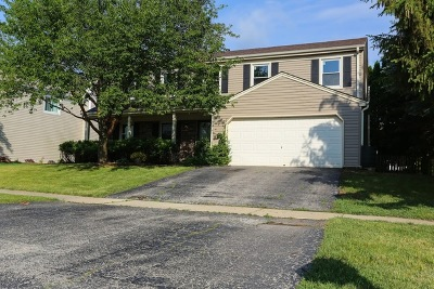 Warrenville Single Family Home For Sale: 2s310 Continental Drive