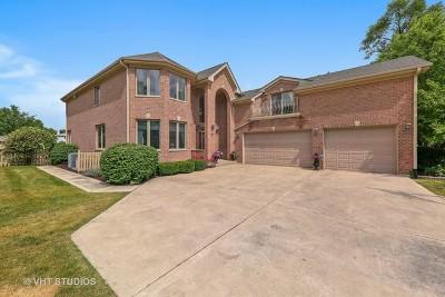 Glen Ellyn Single Family Home For Sale: 1n630 Park Boulevard