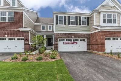 Naperville Condo/Townhouse For Sale: 927 Paisley Lot #3.05 Lane