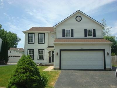 Fox Lake Single Family Home For Sale: 8113 Magnolia Court