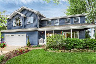 Downers Grove Single Family Home For Sale: 237 4th Street