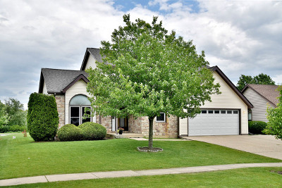 Lake Zurich Single Family Home For Sale: 155 Fern Road