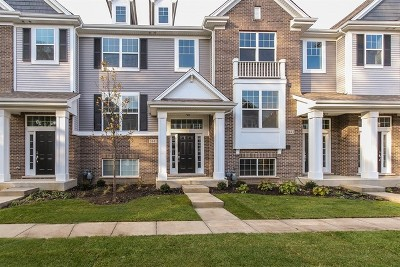 Naperville Condo/Townhouse For Sale: 1445 North Charles Lot #3.02 Avenue
