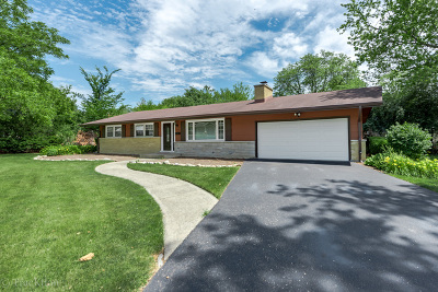 Downers Grove Single Family Home For Sale: 1925 Prairie Avenue