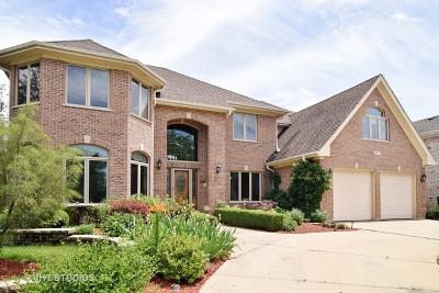 Addison Single Family Home Price Change: 917 West Stonehedge Drive
