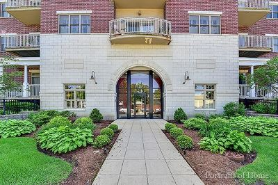 Downers Grove Condo/Townhouse Contingent: 965 Rogers Street #503