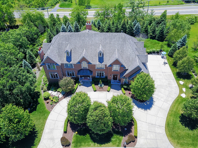 Orland Park Single Family Home For Sale: 60 Silo Ridge Road South