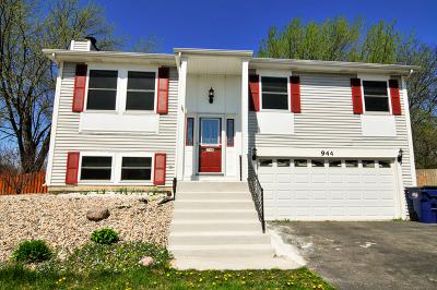 Bartlett Single Family Home For Sale: 944 Surf Court