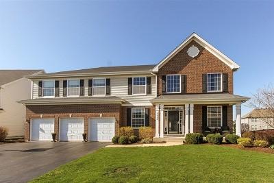 Bartlett Single Family Home For Sale: 146 Sunflower Lane