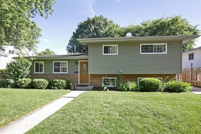 West Dundee Single Family Home Contingent: 614 Lisa Road