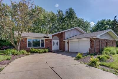 Orland Park Single Family Home For Sale: 12263 Lake View Drive
