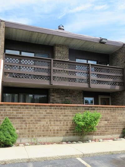 Elgin Condo/Townhouse Re-activated: 1103 Kenneth Circle