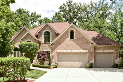 Frankfort Single Family Home For Sale: 20511 Abbey Drive