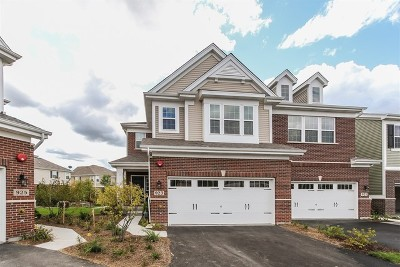 Naperville Condo/Townhouse For Sale: 923 Paisley Lot #4.01 Lane