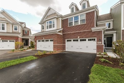 Naperville Condo/Townhouse For Sale: 921 Paisley Lot #4.02 Lane