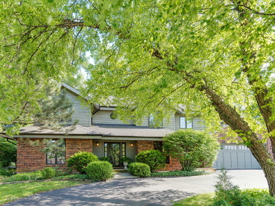 Oak Brook Single Family Home For Sale: 303 Woodview Court