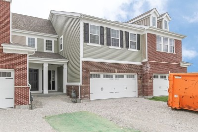 Naperville Condo/Townhouse For Sale: 919 Paisley Lot #4.03 Lane